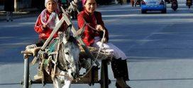 اسمي جولناز، وأنا مسلمة من الأويغور