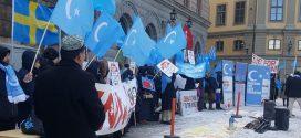 احتجاجات بـ14 دولة ضد انتهاكات الصين بحق المرأة التركستانية
