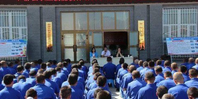 مترجم: سياسة القمع الصينية ضد المسلمين