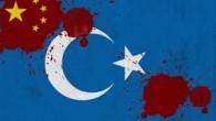 Under de senaste 9 månaderna (sedan april 2013) , har över 30 blodiga incidenter ägt rum i Östturkistan , även känd som